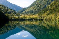 Lago panda Foto de archivo libre de regalías