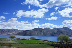 Lago Pangong nel ladakh Fotografia Stock