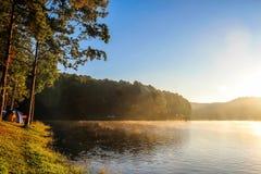 Lago PangUng e foresta dei pini con luce solare calda sulla mattina fotografia stock