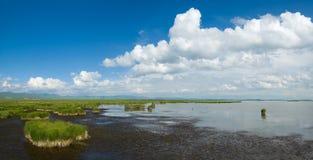 Lago, pantanal, céu e nuvem foto de stock