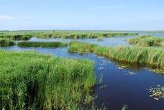 Lago Pape, lago costero de la laguna Imagen de archivo libre de regalías