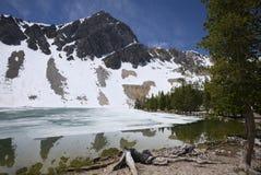 Lago parcialmente deshelado meadow Imagen de archivo libre de regalías