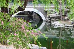 Lago in parco Immagini Stock
