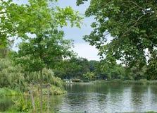 Lago in parco Fotografia Stock Libera da Diritti