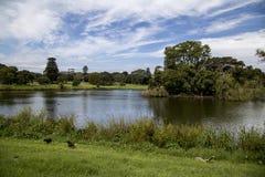 Lago in parco centennale fotografia stock