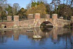 Lago park de Verulamium em St Albans Fotografia de Stock Royalty Free
