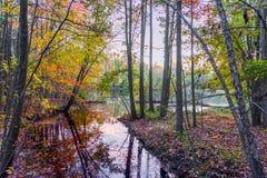 Lago park do feriado no crepúsculo Imagens de Stock Royalty Free
