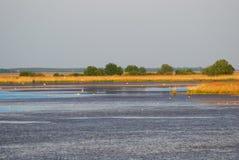 Lago, parque nacional de Hortobagy, Hungria Imagem de Stock