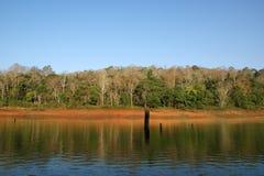 Lago, parque nacional de Periyar, Kerala, la India Foto de archivo