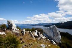 Lago Pedder - Tasmania fotografía de archivo