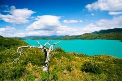 Lago Pehoe en el parque nacional de Torres del Paine - Chile fotografía de archivo libre de regalías