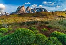 Lago Pehoe, Nationale Park Torres del Paine binnen Royalty-vrije Stock Foto's