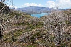Lago Pehoe nel parco nazionale di Torres del Paine, regione del Magallanes, Cile del sud Immagini Stock Libere da Diritti