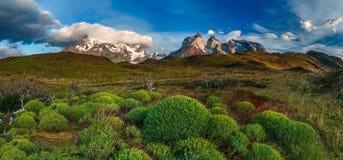 Lago Pehoe, parco nazionale Torres del Paine dentro fotografie stock libere da diritti