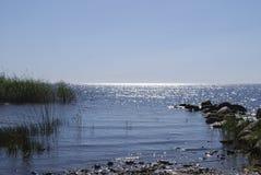 Lago Peipsi Chudskoe del lago, riva del lago erbosa Fotografia Stock