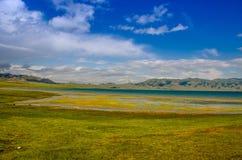 Lago pelo prado Imagem de Stock Royalty Free