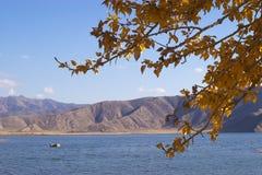 Lago pelo sidehill Fotos de Stock Royalty Free