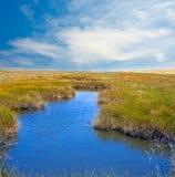 Lago pequeno Imagem de Stock Royalty Free