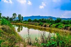 Lago pequeno Aquela é lagoa Fotografia de Stock