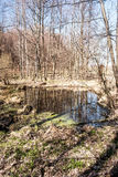 Lago pequeno com árvores e reflexão do céu Foto de Stock