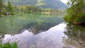 Lago pequeno Hintersee da montanha no nascer do sol em Alemanha, cumes video estoque