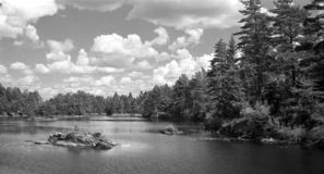 Lago pequeno na floresta - gravou com filme análogo foto de stock