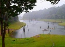 Lago Periyar, bosque y parque nacional en la lluvia, Kerala, la India fotos de archivo