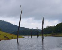 Lago Periyar con las colinas y el verdor en el fondo en un día nublado, Thekkady, Kerala, la India imagen de archivo