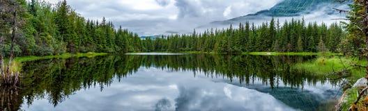 Lago perto da paisagem enorme da geleira de Mendhenall Foto de Stock