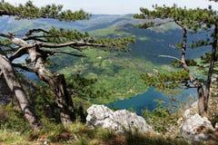 Lago Perucac, punto di vista Banjska Stena, montagna Cesalpina, Serbia occidentale Fotografie Stock Libere da Diritti