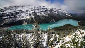 Lago Peyto Fotos de archivo