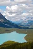 Lago Peyto Imagen de archivo libre de regalías
