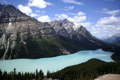 Lago Peyto Imagem de Stock Royalty Free