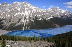 Lago Peyto. Imagen de archivo libre de regalías