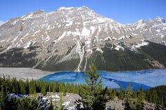 Lago Peyto. Fotografía de archivo