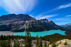 Lago Peyto fotografia stock libera da diritti