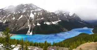 Lago Peyto di scongelamento in primavera Fotografia Stock Libera da Diritti
