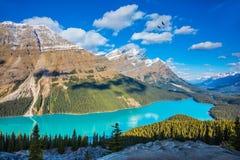 Lago Peyto mountain como a Imagem de Stock Royalty Free