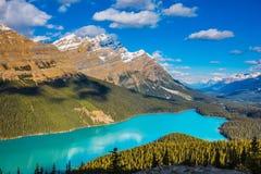 Lago Peyto no parque nacional de Banff Fotografia de Stock