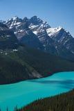 Lago Peyto, parque nacional de Banff Foto de Stock