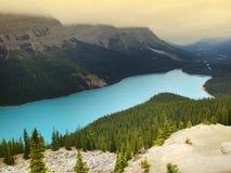 Lago Peyto, parque nacional de Banff, Canadá imagem de stock royalty free