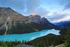 Lago Peyto, sosta nazionale del Banff Immagine Stock