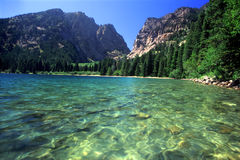 Lago Phelps - Tetons magnífico Foto de archivo