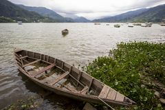 Lago Phewa, Pokra, Nepal imagens de stock royalty free