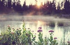 Lago picture Fotos de Stock