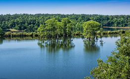 Lago Piney z Foto de Stock Royalty Free