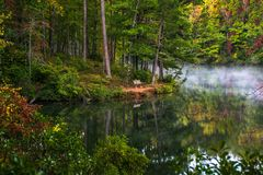 Lago pinnacle nel parco di stato della roccia della Tabella vicino a Greenville, Ca del sud immagine stock libera da diritti