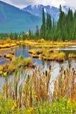 Lago pintoresco con los pequeños islotes foto de archivo
