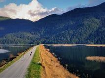 Lago Pitt - a concessão reduz para o leste imagens de stock royalty free