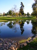 Lago pittoresco in estate Immagine Stock Libera da Diritti